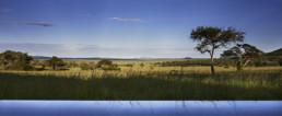 MW Singita Serengeti 5_FP